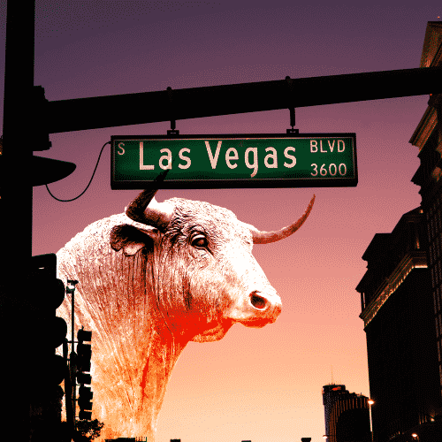 Our Las Vegas Web Services 1