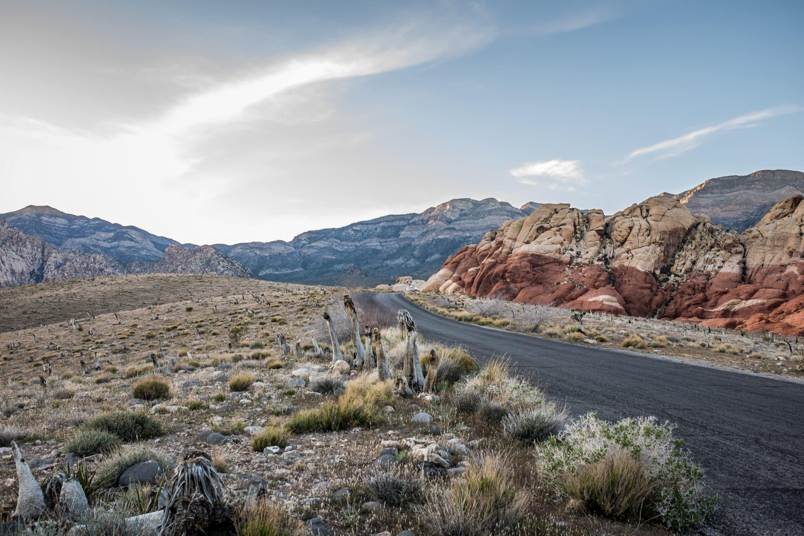 Search Engine Optimization | SEO in Las Vegas 1